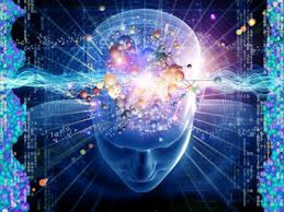 Quelques nouvelles du cerveau, ce joyau qui n'a pas fini de nous étonner!