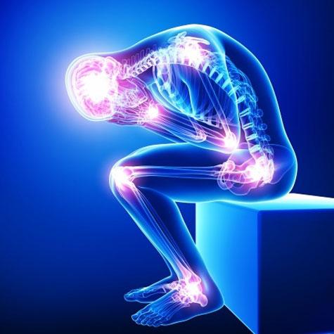 Le corps a un langage précis. Il est essentiel de pouvoir le décoder.